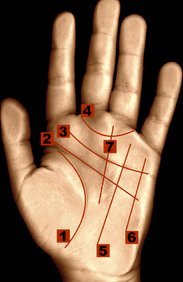 Lines on palmistry